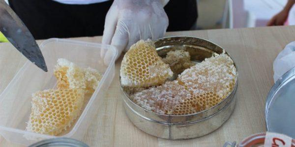Plaster miodu: zalety, skład i sposób przechowywania miodu