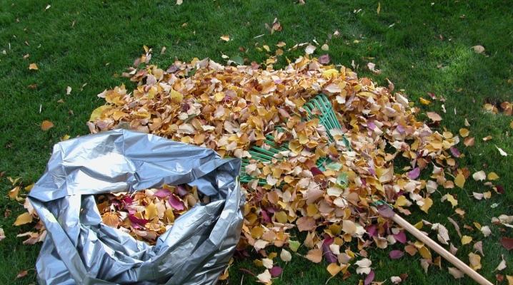 Jak zrobić kompost z liści?